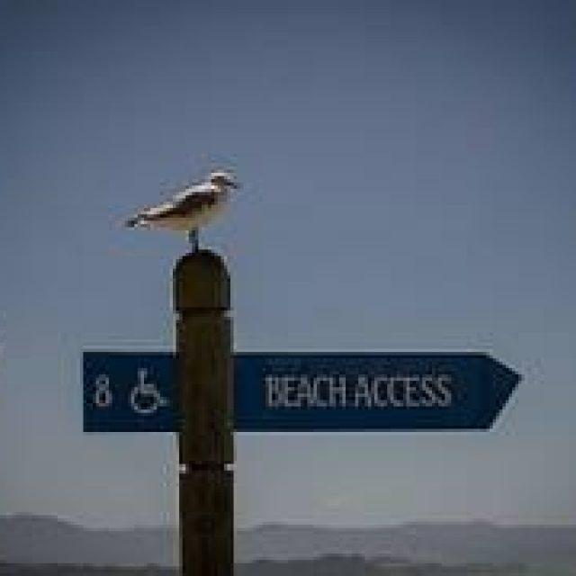 Te llevamos a la playa
